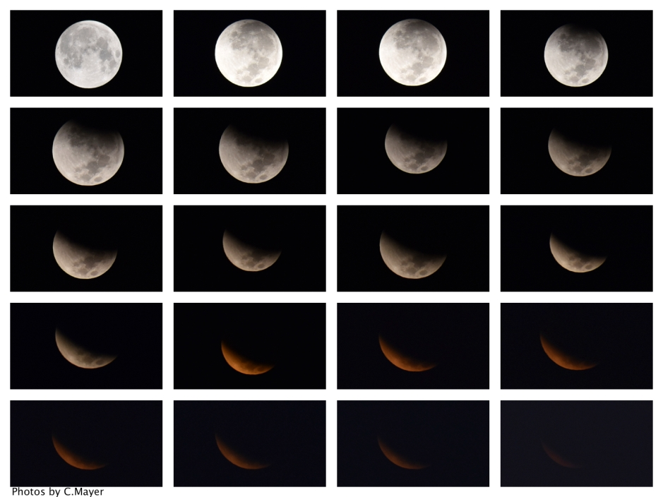 Luna Project