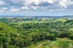 Wälder von Bohol