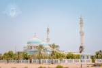 Moschee der Insel Delma